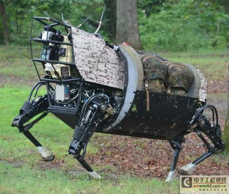盘点十大机器动物:蟑螂改造后可遥控